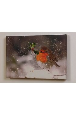 LED Robin Canvas