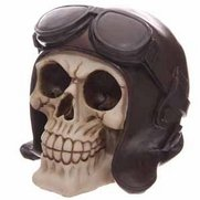 Skull Money Box With Flying Hat & G...