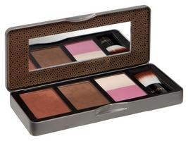 Compare retail prices of Technic Bronzed Radiance Bronzing Kit to get the best deal online