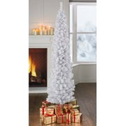 White Pencil Tree