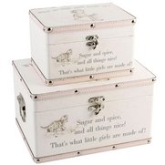 Little Girls Set Of 2 Storage Boxes