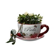 Paris Teacup Planter