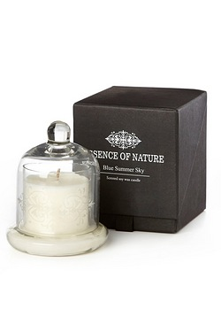 Essence Of Nature Candle - Blue Sum...