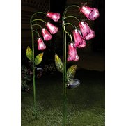Pack Of 2 Foxgloves Solar Lights