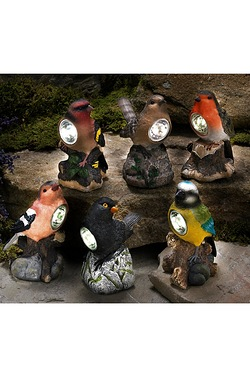Pack Of Six Solar Bird Spotlights