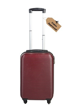ABS Luggage Case 18""
