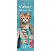 Small Slim Kittens Calendar 2018