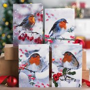 Pack Of 10 Winter Robin Cards
