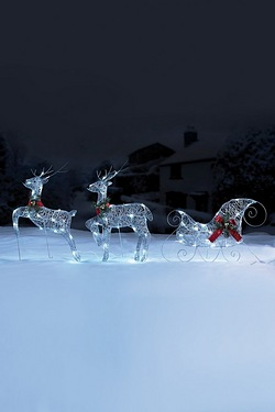 Reindeers and Sleigh