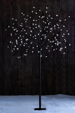 6ft (183cm) Multi-Function LED Sola...