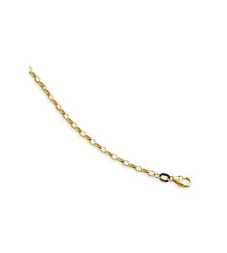 "Image for 9ct Gold 16"" Hollow Oval Belcher Chain from ace"