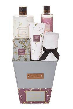 Pear Tree Plant Pot Gift Set