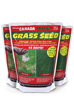 Canada Green 500g Pack Grass Seed -...