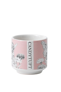 Flower Fairies Candytuft Egg Cup