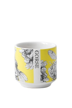 Flower Fairies Gorse Egg Cup