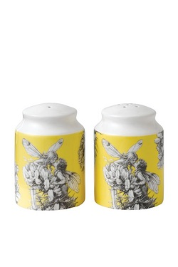 Flower Fairies Gorse Salt and Pepper