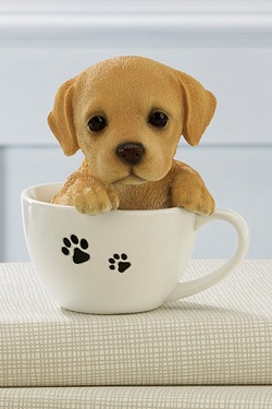 Teacup Pet Pals - Labrador