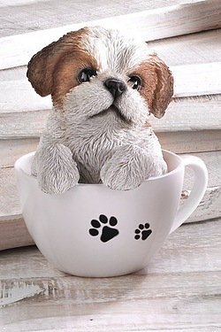 Teacup Pet Pals - Shih Tzu