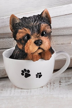 Teacup Pet Pals - Yorkshire Terrier