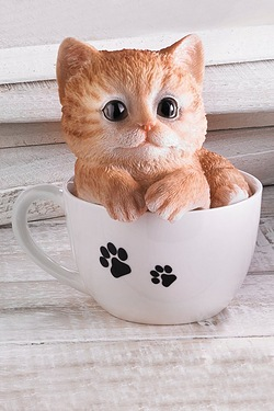 Teacup Pet Pals - Kitten Ginger
