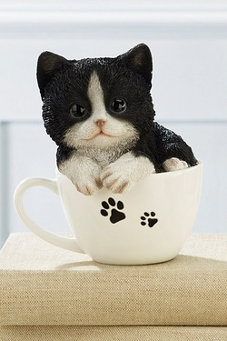 Teacup Pet Pals - Kitten Black White
