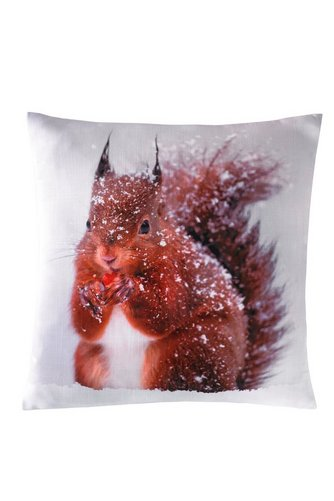 Image for Winter Animals - Squirrel Cushion Cover from ace