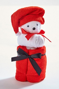 Towel Bundle - Santa