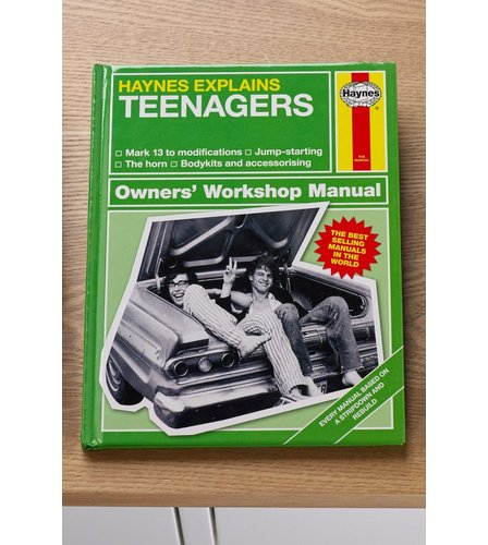 Image for Haynes Teenagers Book from ace