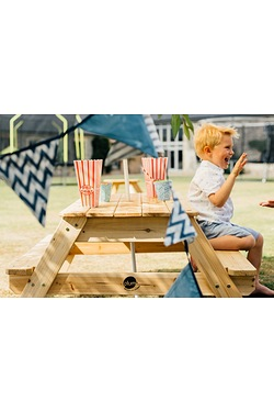 Plum Rectangular Picnic Table with ...