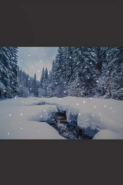 Fibre Optic Snowy Winter Canvas