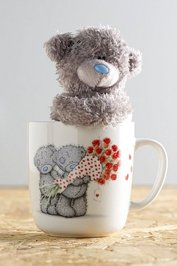 Me To You With Love Mug and Plush