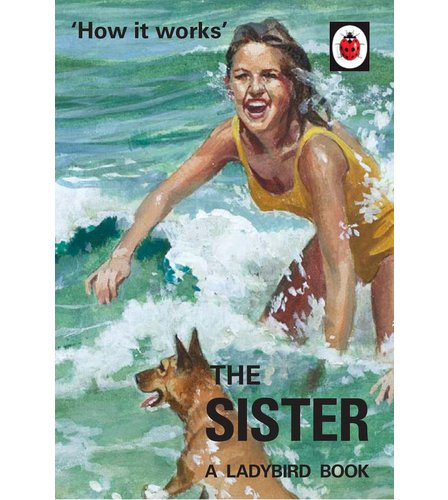 Image for The Ladybird Book Of The Sister from ace
