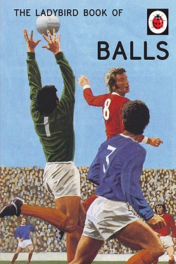 The Ladybird Book Of Balls