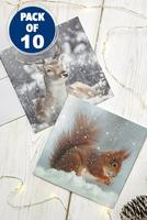 Compare retail prices of 10 Winter Woodland Animal Cards to get the best deal online