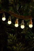 Compare retail prices of 10 Bulb LED Solar String Lights - Warm White to get the best deal online