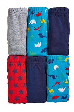 Boys Pack Of 7 Dinosaur Briefs