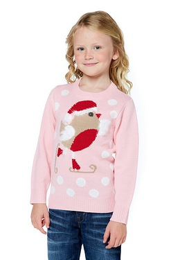 Girls Robin Christmas Jumper