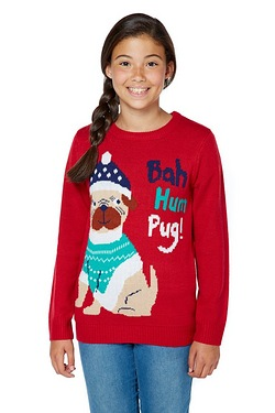 Girls Pug Christmas Jumper