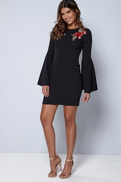 Be You Embroidered Flute Sleeve Dress