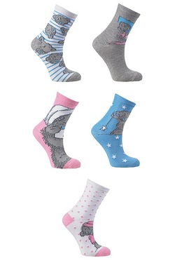 Pack Of 5 Socks - Tatty Teddy