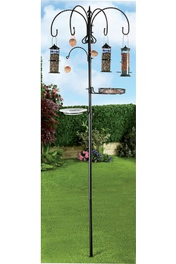 All In One Bird Feeding Station