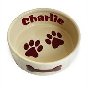 Large Paws Dog Bowl