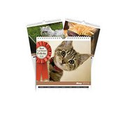Personalised Cats A3 Calendar