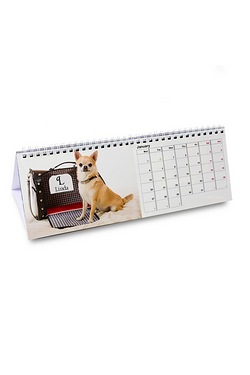 Personalised Your Barking Mad Desk ...
