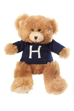 Teddy Bear With Personalised Initia...