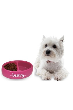 Double Round Pet Feeding Bowl