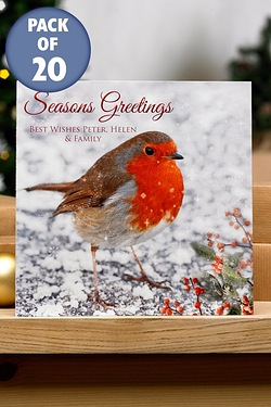 Robin and Berries Cards - Front Cover