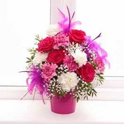 Vibrant Feather Flower Arrangement