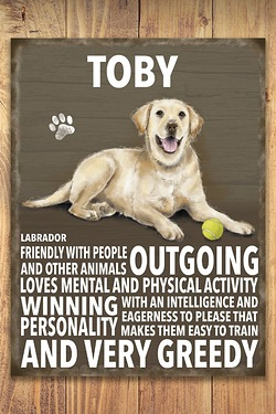 Personalised Metal Dog Sign - Yellow Labrador