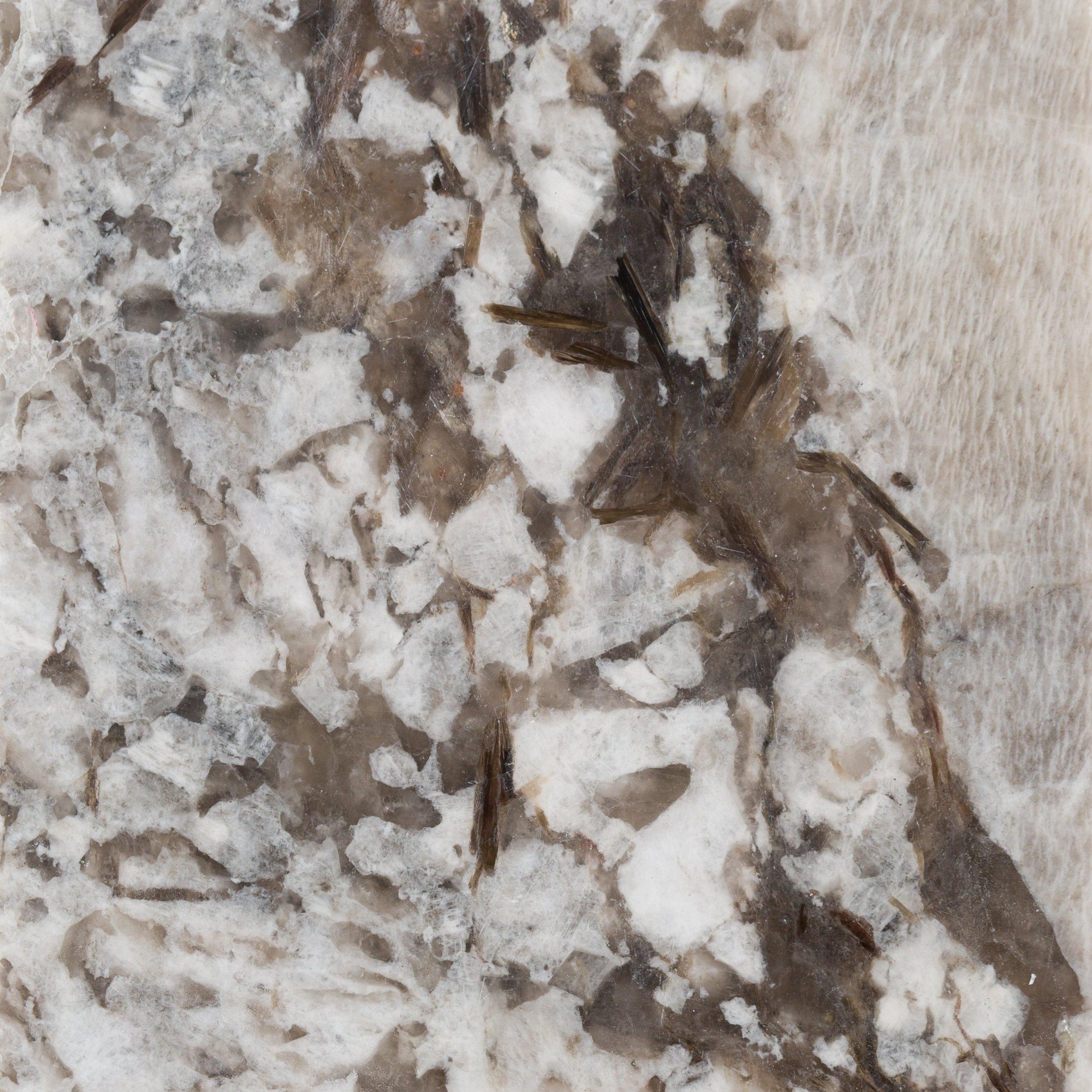 Sample Custom Countertop Bianco Antico Granite 4 X 4 100200153 Floor And Decor
